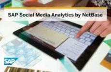 media_analytics_netbase_1